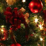 Christmas Tree Lighting – Dec. 4th